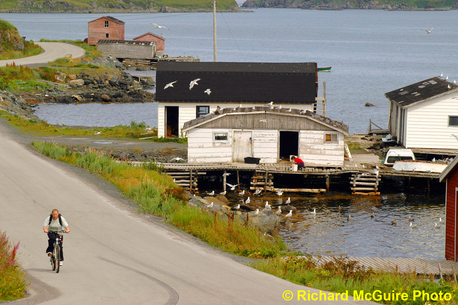 Quirpon, Northern Peninsula, Newfoundland and Labrador, Canada