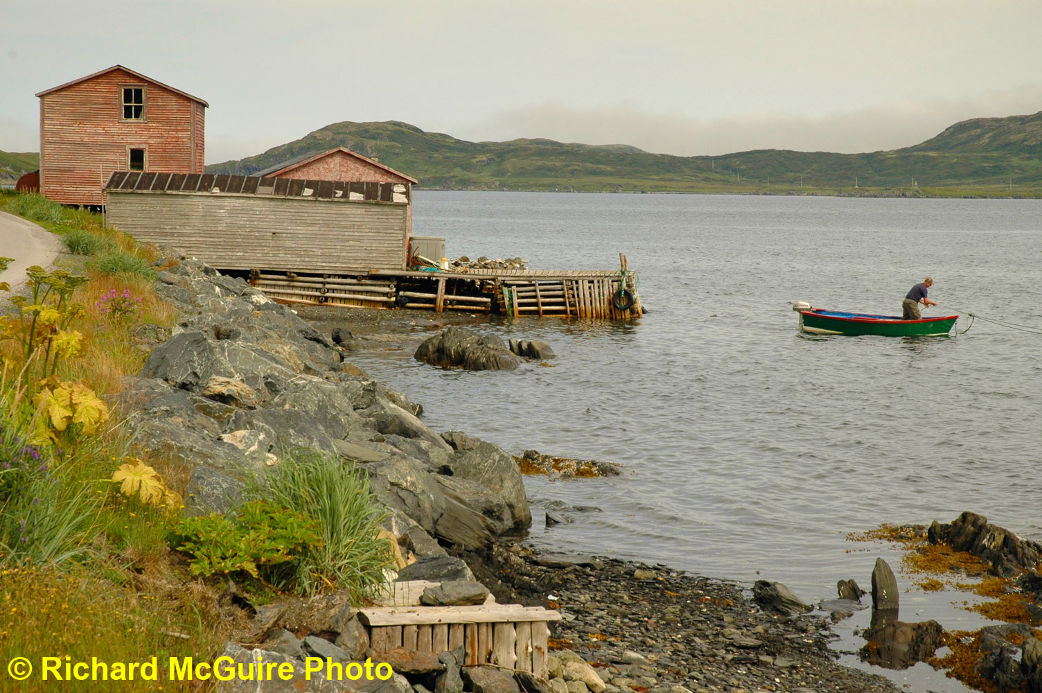 Quirpon, Northern Peninsula, Newfoundland and Labrador, Canada (2)