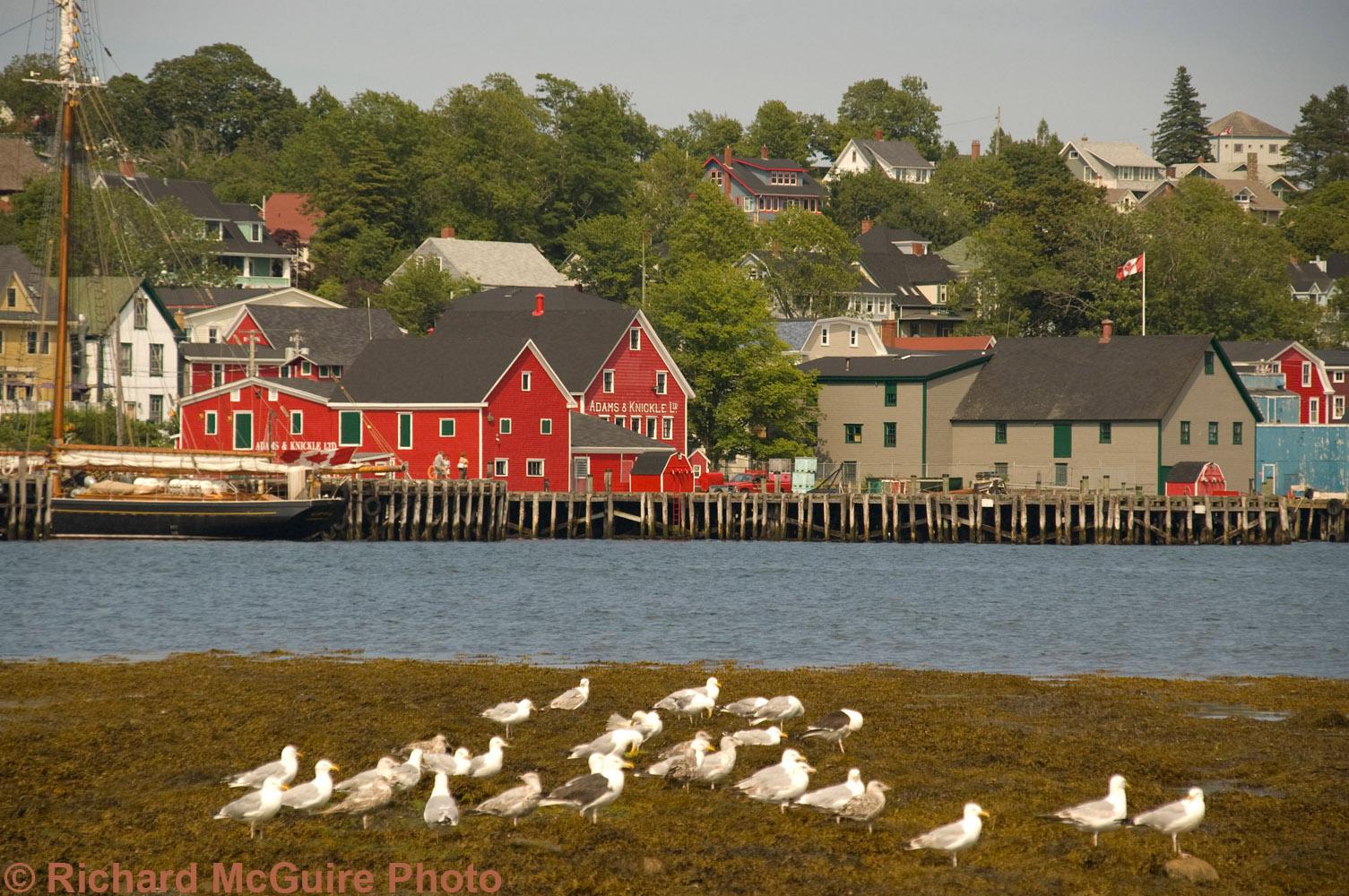 Lunenburg, Nova Scotia, from across the water