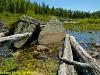 Dead logs, Costello Creek, Algonquin Park, Ontario