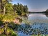 South Otter Lake, Frontenac Provincial Park