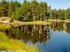Beaver pond, Frontenac Provincial Park (3)
