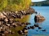 Rocky shoreline and gull, Algonquin Park