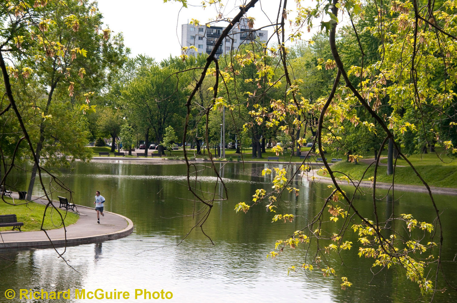 Peaceful Sunday, Parc Lafontaine, Montreal
