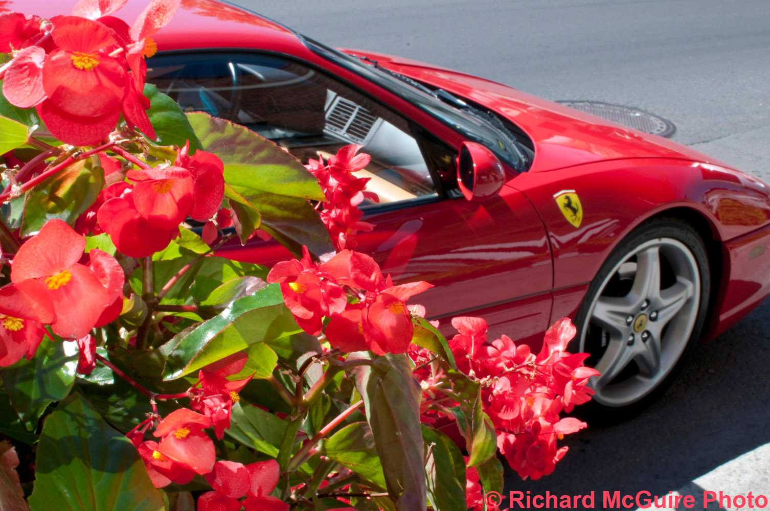 Flower car, Little Italy, Montreal, Quebec