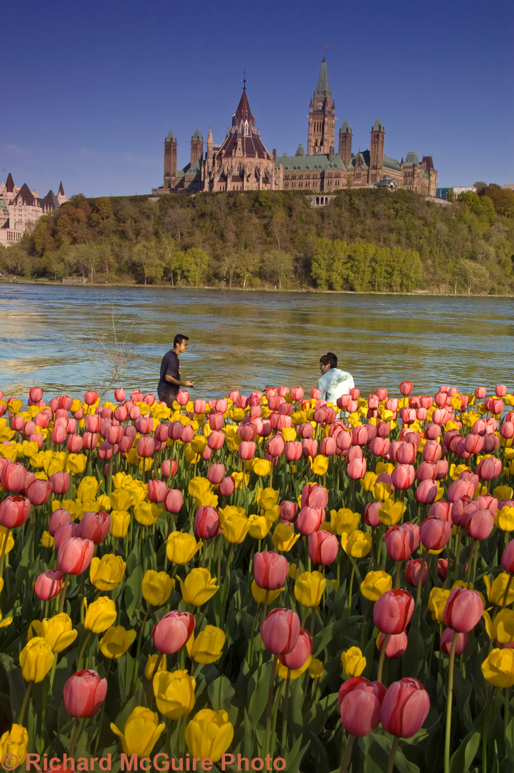 Parliament Buildings at Tulip Time