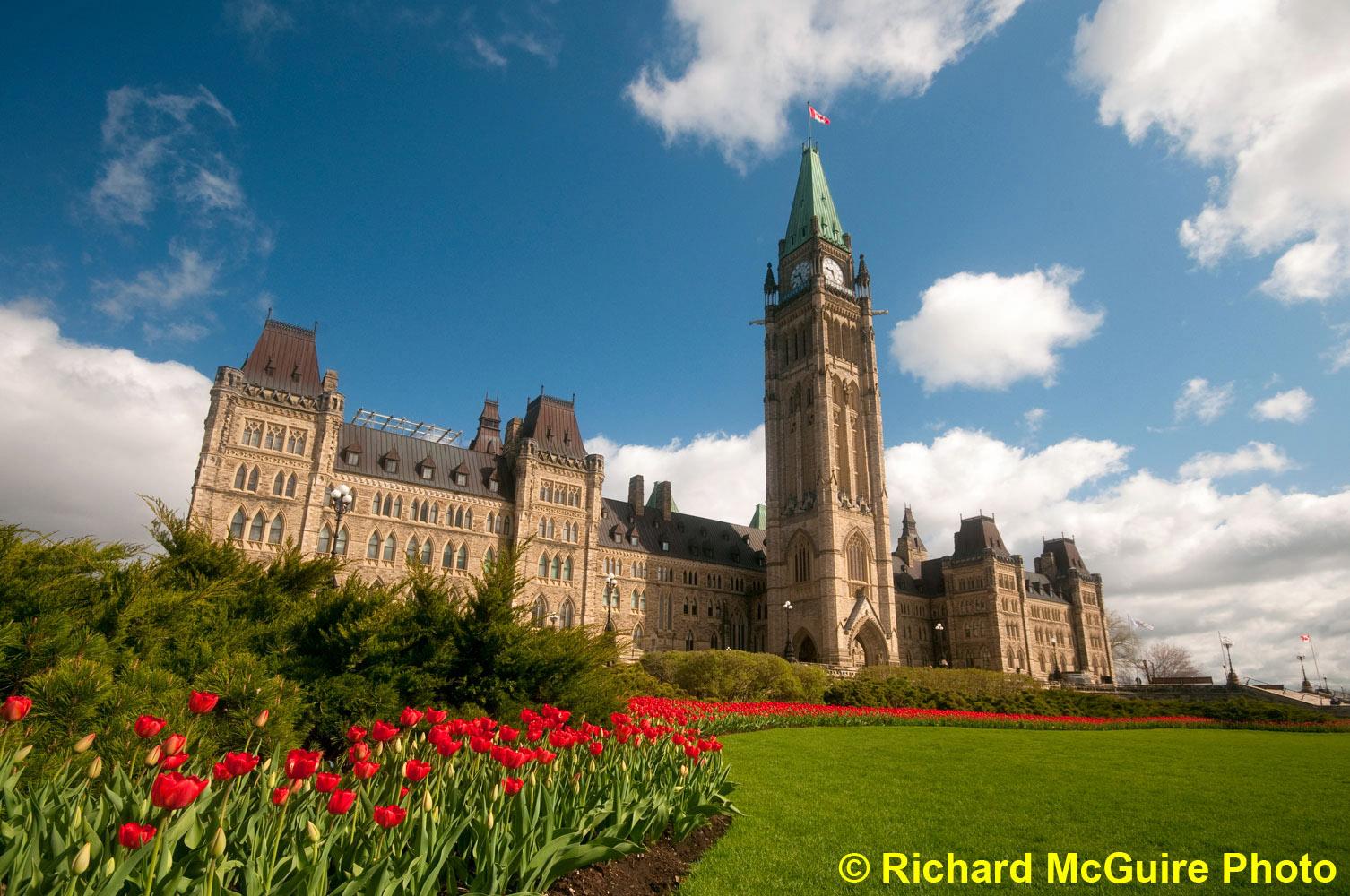 Tulip time in Ottawa