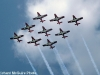 Snowbirds on Canada Day