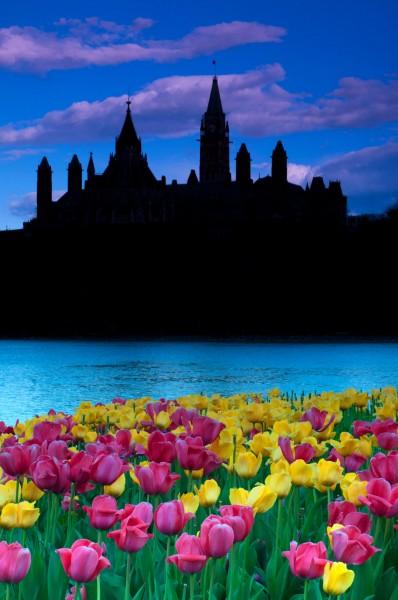Dark fantasies, Ottawa